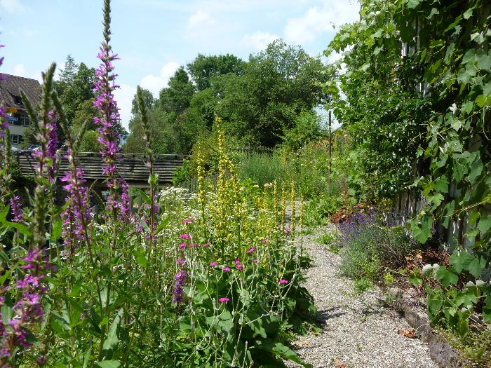 Gehoelzschnitt Garten